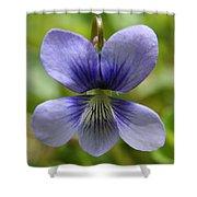 Floral Flight  Shower Curtain
