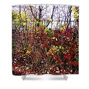 Floral Garden Feast Shower Curtain