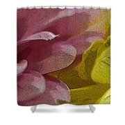Floral Impressions Shower Curtain