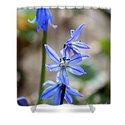 Floral Ladder  Shower Curtain