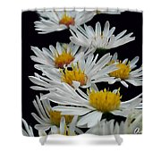 Floral Parade Shower Curtain