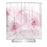 Floral Peonies In Pink Shower Curtain