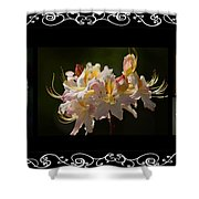 Floral Photomontage 1 Shower Curtain