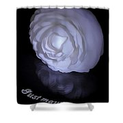 Floral Reflections 4 - Camellia Shower Curtain