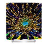 Floral Revolution 3 Shower Curtain