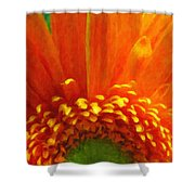 Floral Sunrise - Digital Painting Effect Shower Curtain