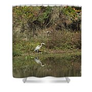 Florence Marina State Park Shower Curtain