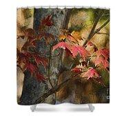 Florida Autumn Leaves Shower Curtain