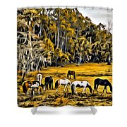 Florida Horses Two Shower Curtain