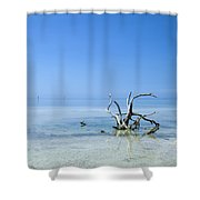 Florida Keys Lonely Root Shower Curtain