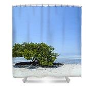 Florida Keys Lonely Tree Shower Curtain