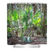 Florida Palmetto Bush Shower Curtain