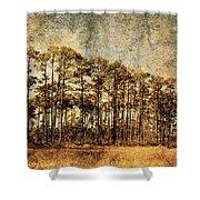 Florida Pine 4 Shower Curtain