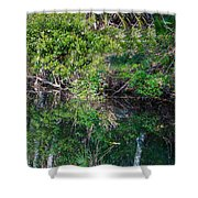 Florida River Shower Curtain