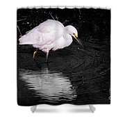Florida Snow In Black And White Shower Curtain