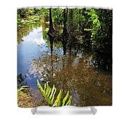 Florida Stream Shower Curtain
