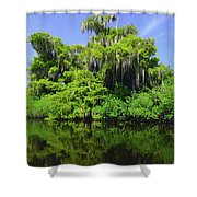 Florida Swamps Shower Curtain