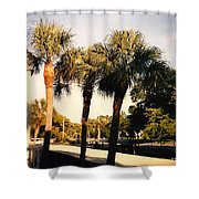 Florida Trees 2 Shower Curtain