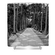 Florida Walkway Black And White Shower Curtain