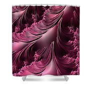 Flourishes - Phone Cases And Cards Shower Curtain