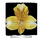 Flower 001 Shower Curtain