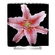 Flower 002 Shower Curtain