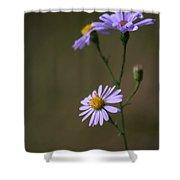 Flower 1 Shower Curtain