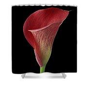 Flower 102 Shower Curtain