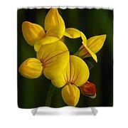 Flower 105 Shower Curtain