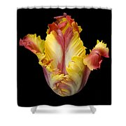 Flower 112 Shower Curtain