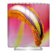 Flower 148 Shower Curtain