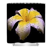 Flower 171 Shower Curtain