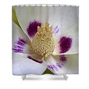 Flower 179 Shower Curtain