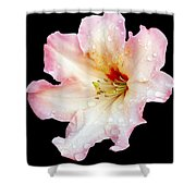 Flower 225 Shower Curtain