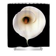 Flower 301 Shower Curtain