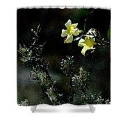 Flower Among The Moss Shower Curtain