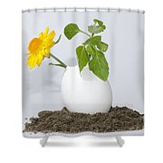 Flower And Egg Shower Curtain