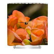 Flower And Ready To Fly Shower Curtain