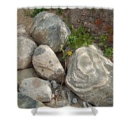 Flower And Rocks Shower Curtain