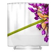 Flower At Rest Shower Curtain