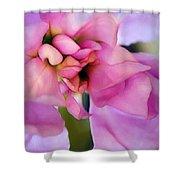 Flower At Twilight Shower Curtain