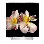 Flower Azalea. Shower Curtain