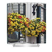 Flower Baskets  Shower Curtain