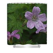 Flower Bath Shower Curtain