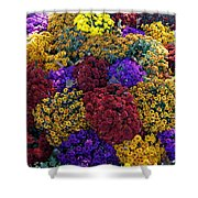 Flower Bed Across The Street From The Grand Palais Off Of Champs Elysees  Shower Curtain