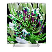Flower Bunch Bush Sensual Exotic Valentine's Day Gifts Shower Curtain