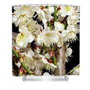 Flower Bunch Bush White Cream Strands Sensual Exotic Valentine's Day Gifts Shower Curtain