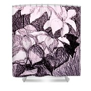 Flower Burst Original Shower Curtain