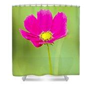 Flower - Closeup Shower Curtain