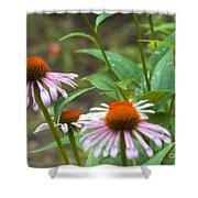Flower - Cone Flower- Luther Fine Art Shower Curtain